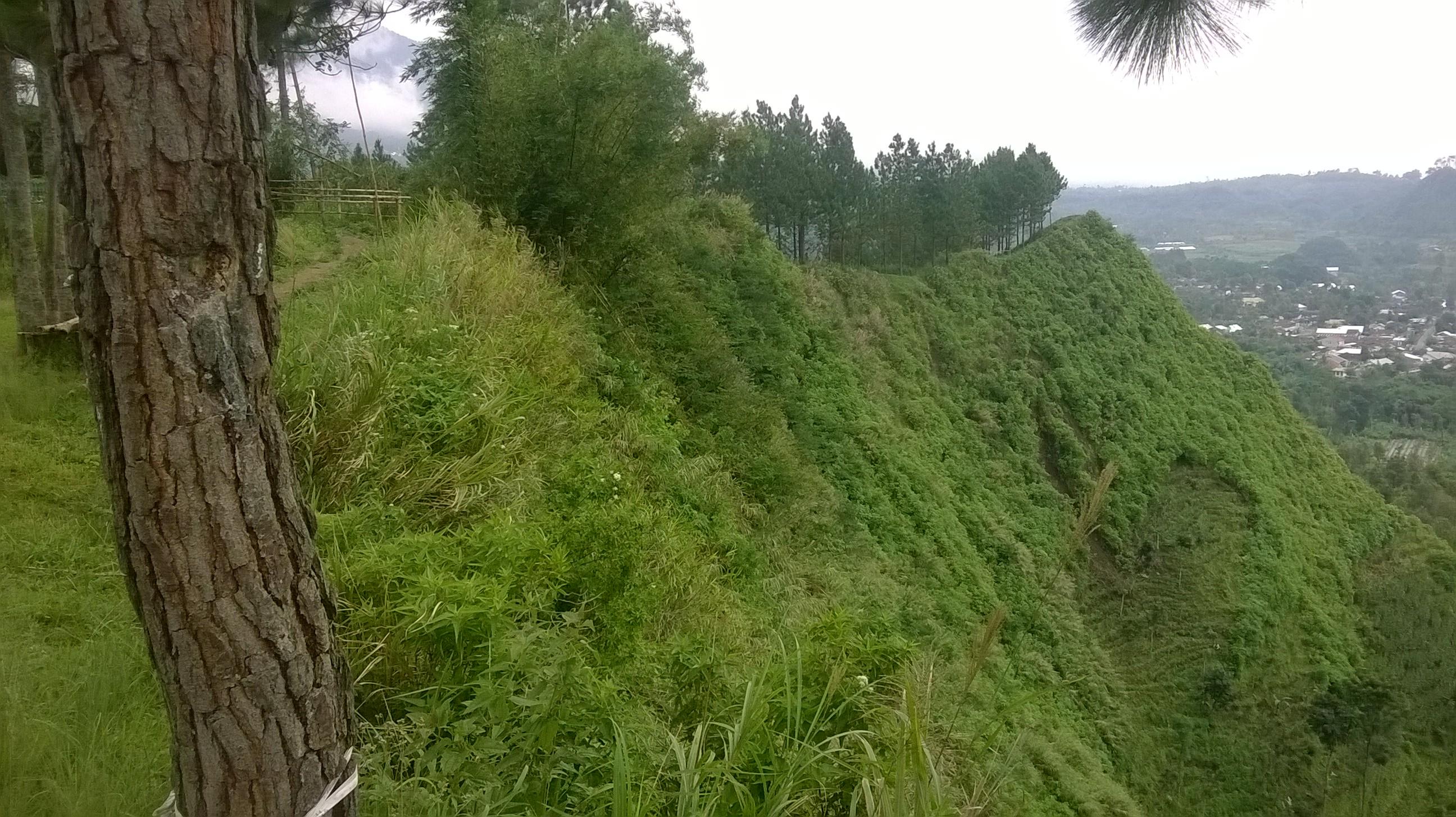 Obyek Wisata Bukit Tangkeban